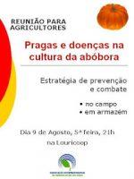 Reunião para agricultores – pragas e doenças na cultura da abóbora