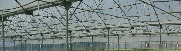 Dia de campo sobre variedades hortícolas