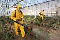 Novas regras para o uso de produtos fitofarmacêuticos