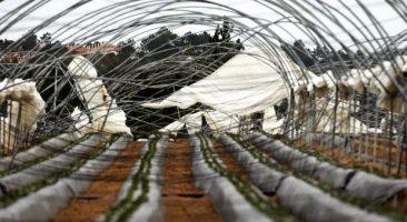 Levantamento de estragos causados pelo mau tempo – DRAPLVT