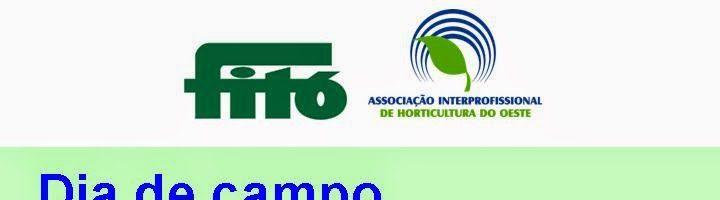 Dia de campo Fitó – Fórum Tecnologia e Horticultura