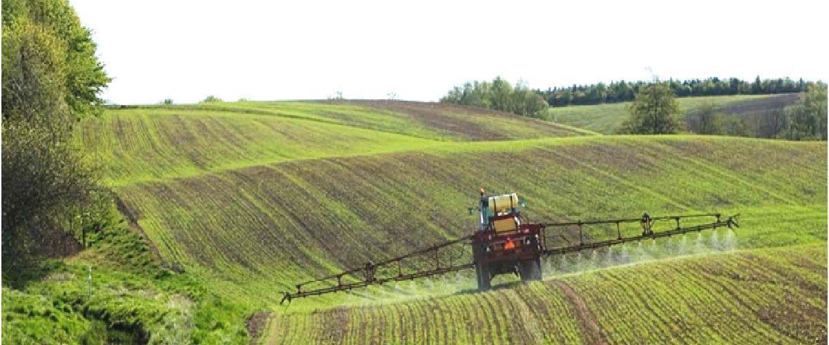 """Biopesticidas à base de RNAi fazem parte da nova """"Revolução Verde"""""""