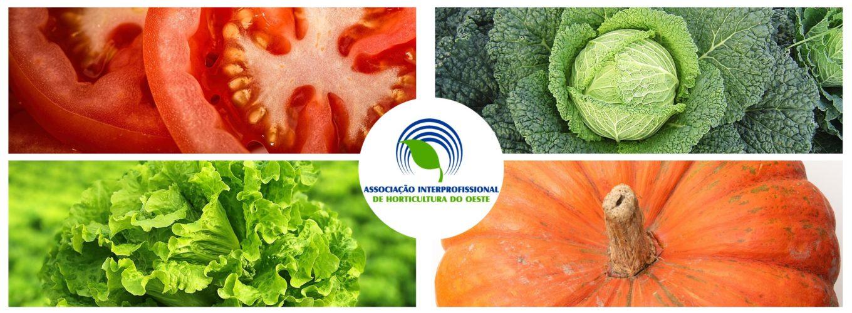 AIHO - Associação Interprofissional de Horticultura do Oeste