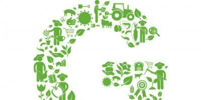 Novo serviço AIHO – Apoio à implementação de GLOBAL G.A.P.