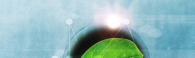 Candidaturas aos Apoios à Eletricidade 'Verde'